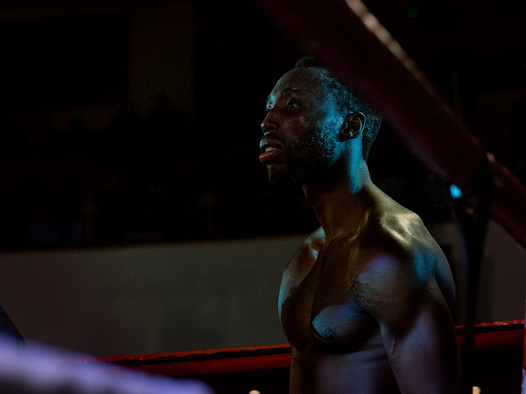 Good Boy Wolf Photographer, filmic portrait,  boxer in the boxing ring