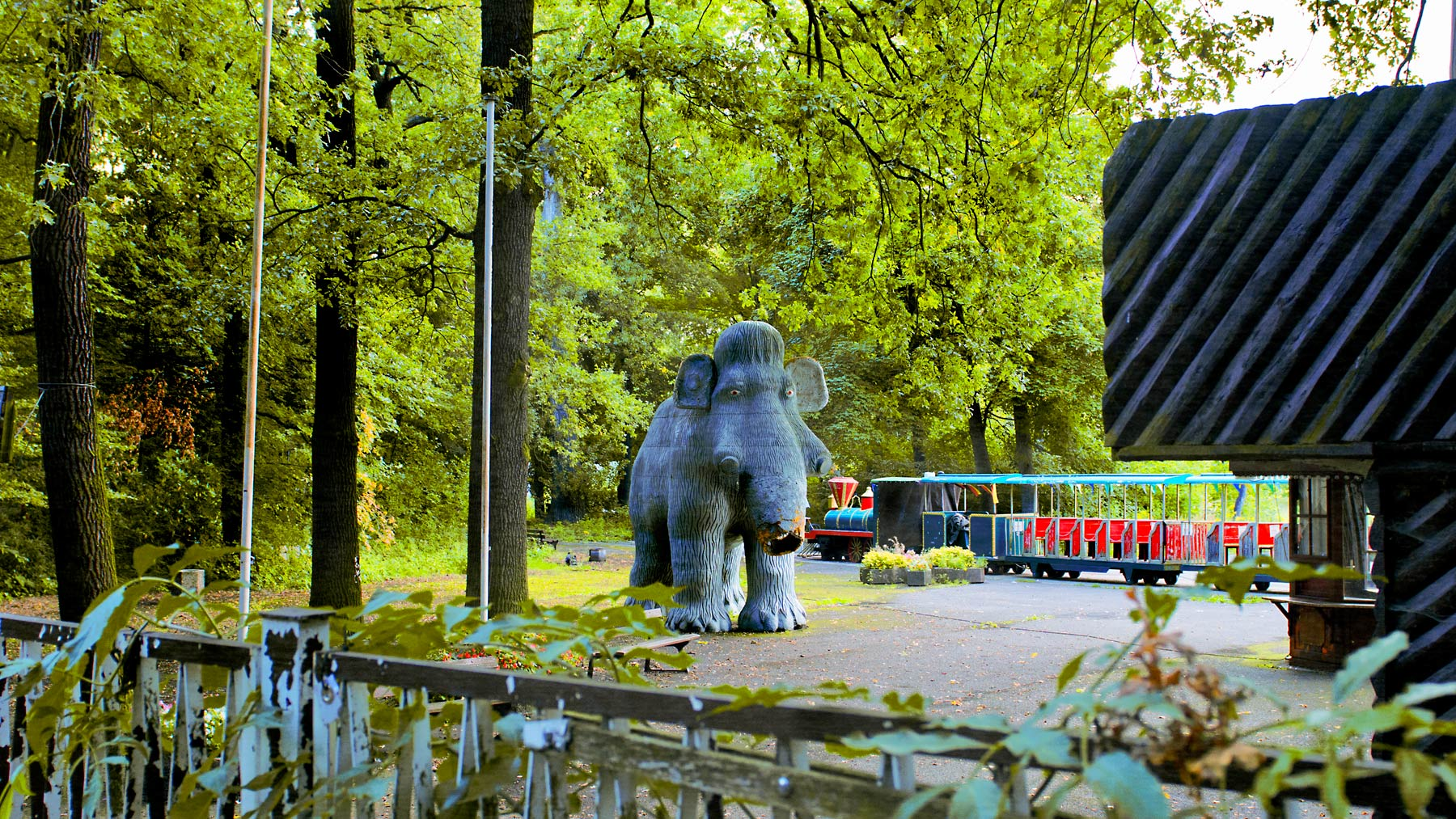 Good Boy Wolf Photographer, filmic landscape, Berlin elephant surrounded by trees