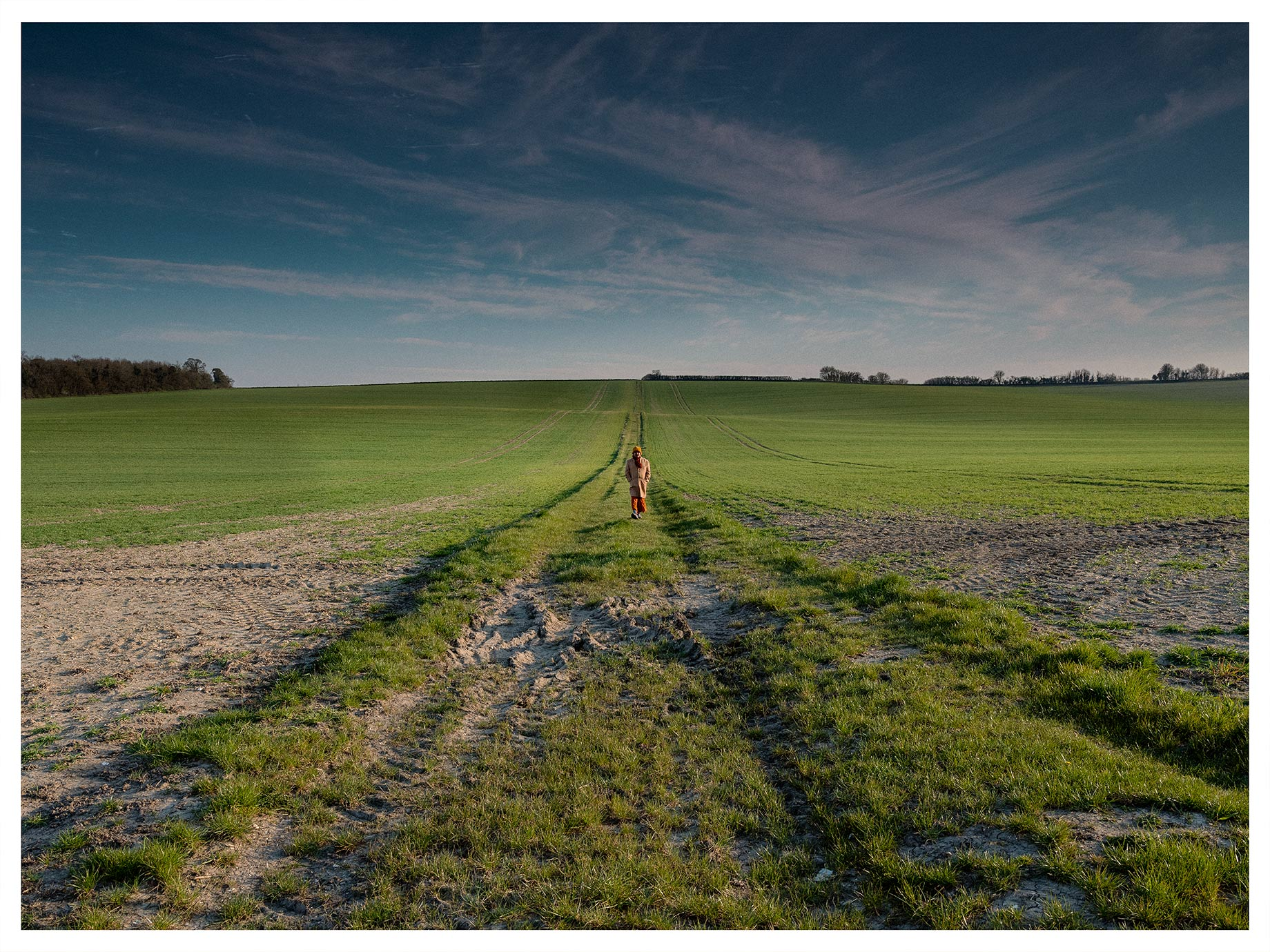 Good Boy Wolf Photographer, filmic landscape, lonely walker walking through the fields