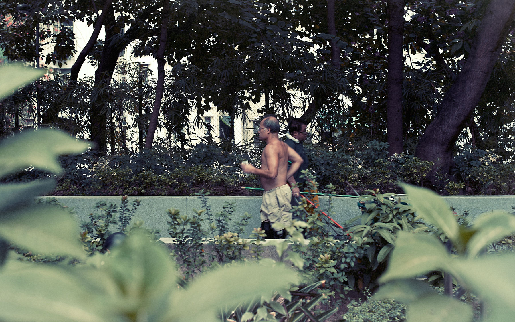 Good Boy Wolf Photographer, filmic landscape,  Chinese man running in a park with his top off