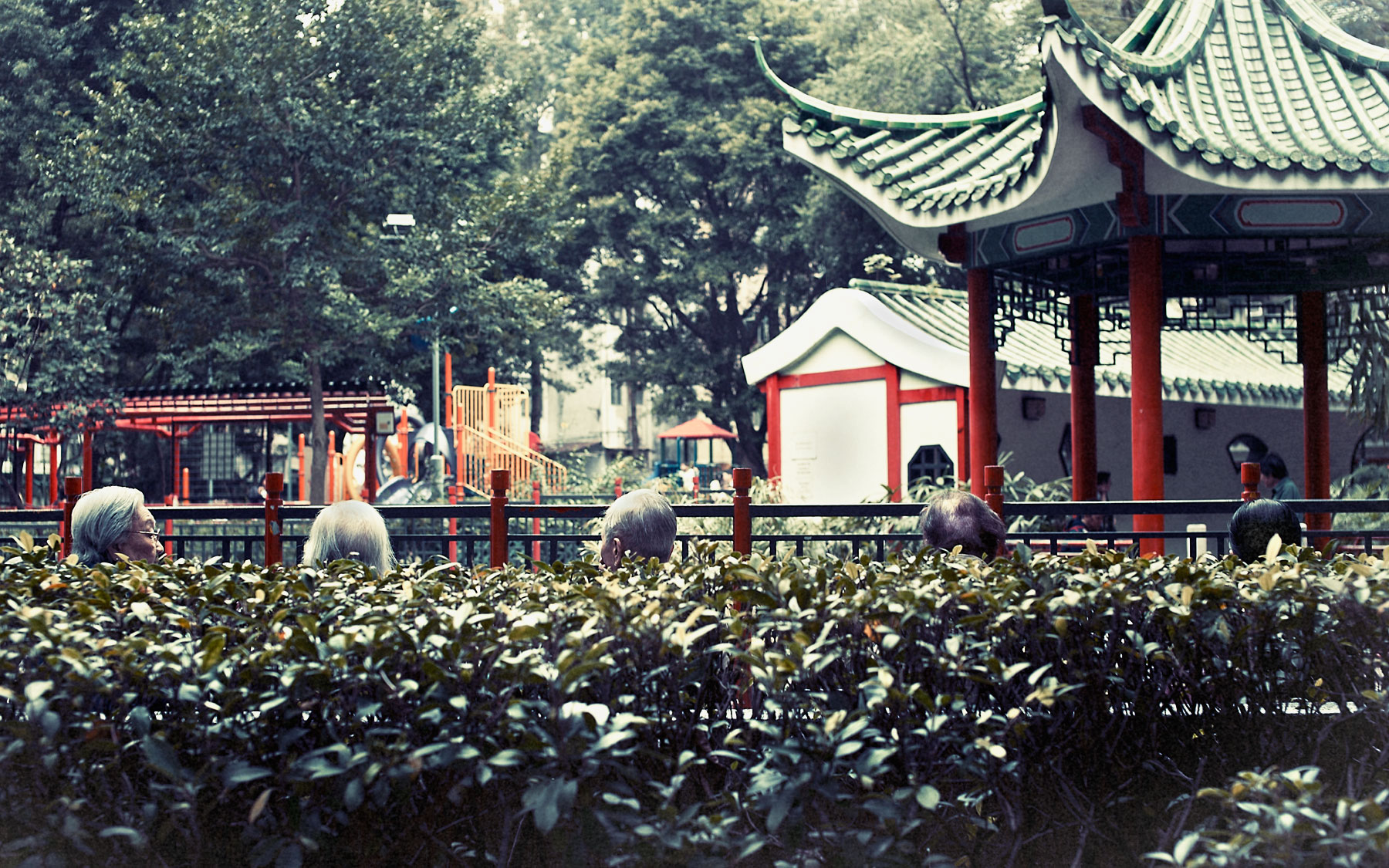 Good Boy Wolf Photographer, filmic landscape,  Hong Kong women sitting on a park bench